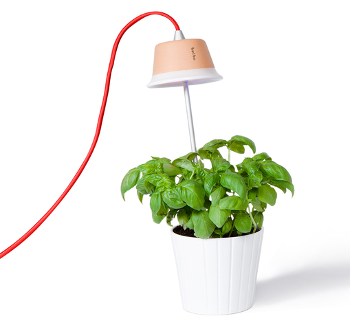 | Bulbo Cynara 7 Watt met rode kabel